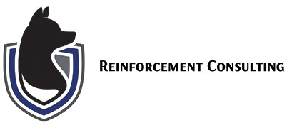 Reinforcement Consulting